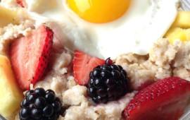 FeatureImage_Food_metabolism